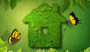 Photoshop_Green_house_013460_27